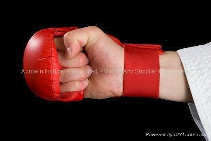 Karate mitt karate glove 1