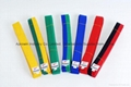 Taekwondo colour belt