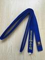 Kyokushin Karate color belt