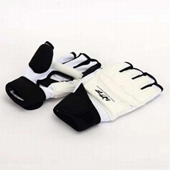 Taekwondo Gloves  Taekwondo Hand protector (Hot Product - 1*)