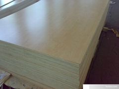 Melamine Face Plywood
