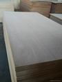 Waterproof Plywood,WBP plywood