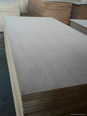 Waterproof Plywood,WBP p