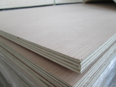 Natural Beech Veneer Plywood For Furniture And Decoratiion