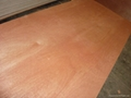 Red Hardwood Commercial Plywood