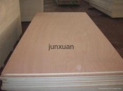 Door Skin  Plywood For Decoration