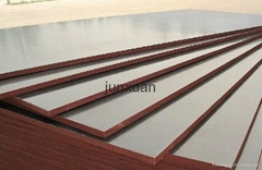 Brown Film Face Plywood For Concrete Formwork