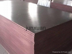 Poplar,Hardwood,Combi,Birch Core Brown Film Face Plywood Used For Construction