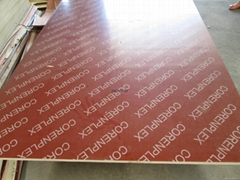 Red Marine Plywood With Logo, Red Film PlywoodWith Logo , Red Film Faced Plywood