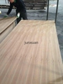 mdf with both sides natural teak veneer