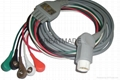 HP one -piece 5-lead AHA ,  cable with
