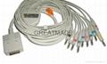 伯迪克心電圖機電纜及導聯線 (