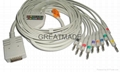 Burdick EK-10  EKG cable with leadwires