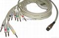 Petas  EKG Multi-Link Leadwires , 4.0