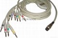 Petas  EKG Multi-Link Leadwires , 4.0 Banana