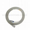 CSI 8100尤它IBP適配器電纜 3