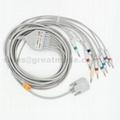 日本光电心电图机电缆及导联线 (4.0 香蕉插 )