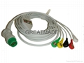 Siemens one piece 5-lead IEC cable with