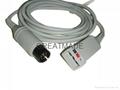 GE Pro1000 三導電纜