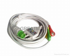 Fukuda integrated cable with 3-lead snap leadwires