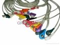 GE-馬葵扣式導聯線