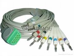 馬葵一體式心電圖機導聯線