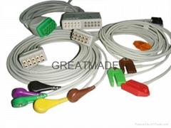GE 分体式电缆及导联线