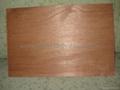 okume plywood