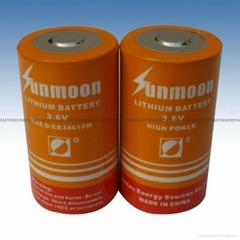 ER34615M锂亚电池 ER34615M D型 3.6V锂亚电池