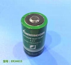 ER34615 19AH 3.6V锂亚电池