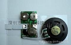 水晶音樂IC Win8905