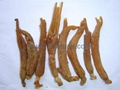 Red Ginseng Roots with or without tails