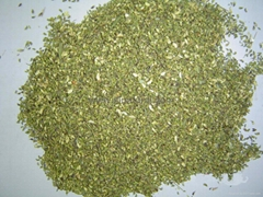 Sophora Japonica Linn