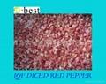 IQF DICED RED PEPPER 2
