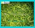 單凍蒜苗段