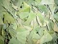 銀杏葉提取物 3