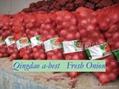 ORGANIC FRESH RED ONIONS 7