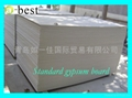 Paper-Faced Gypsum Board 4