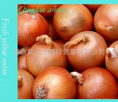 2018 NEW CROPS FRESH YELLOW AND RED ONION