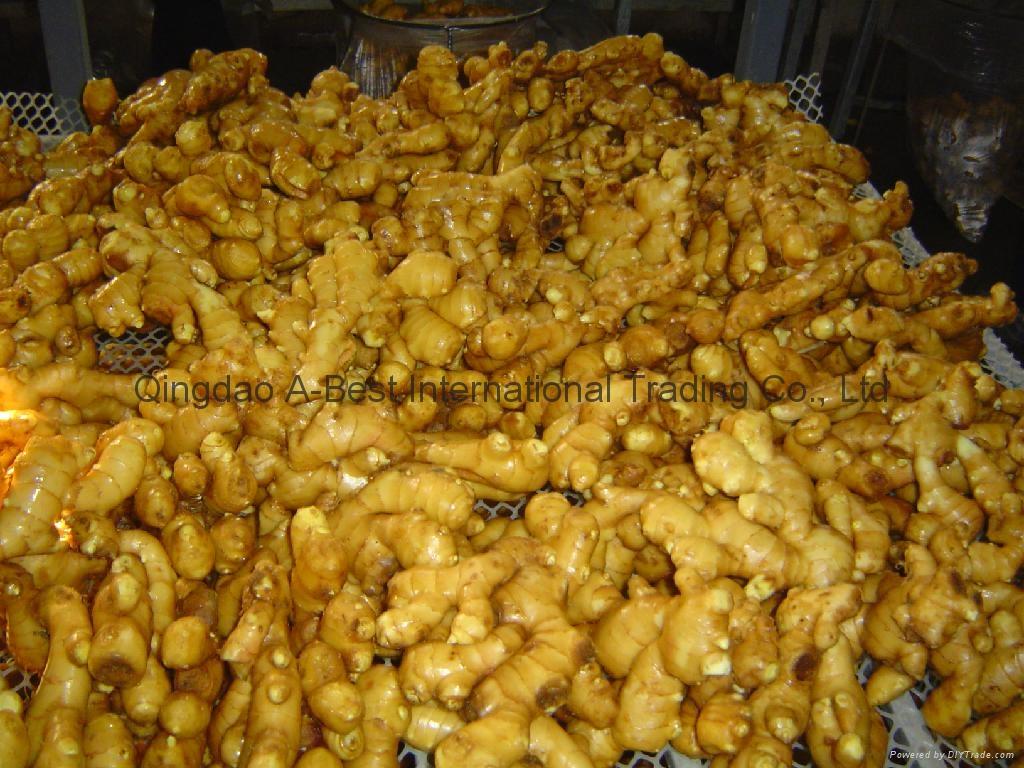 2019 Chinese Fresh Ginger 10