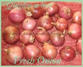 2017 NEW CROPS FRESH RED ONION 12