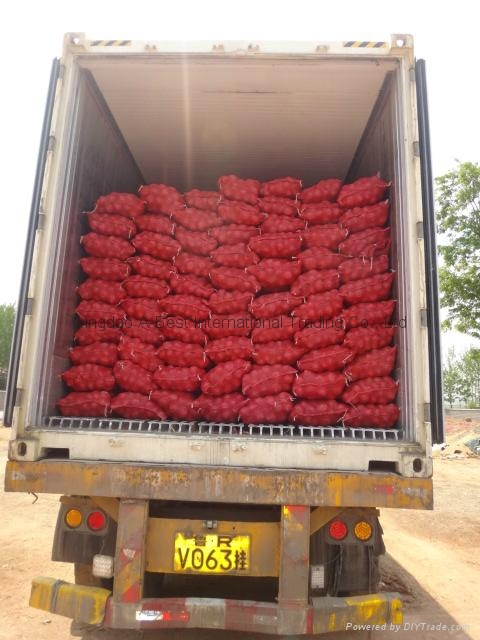 2018 NEW CROPS FRESH RED ONION 20