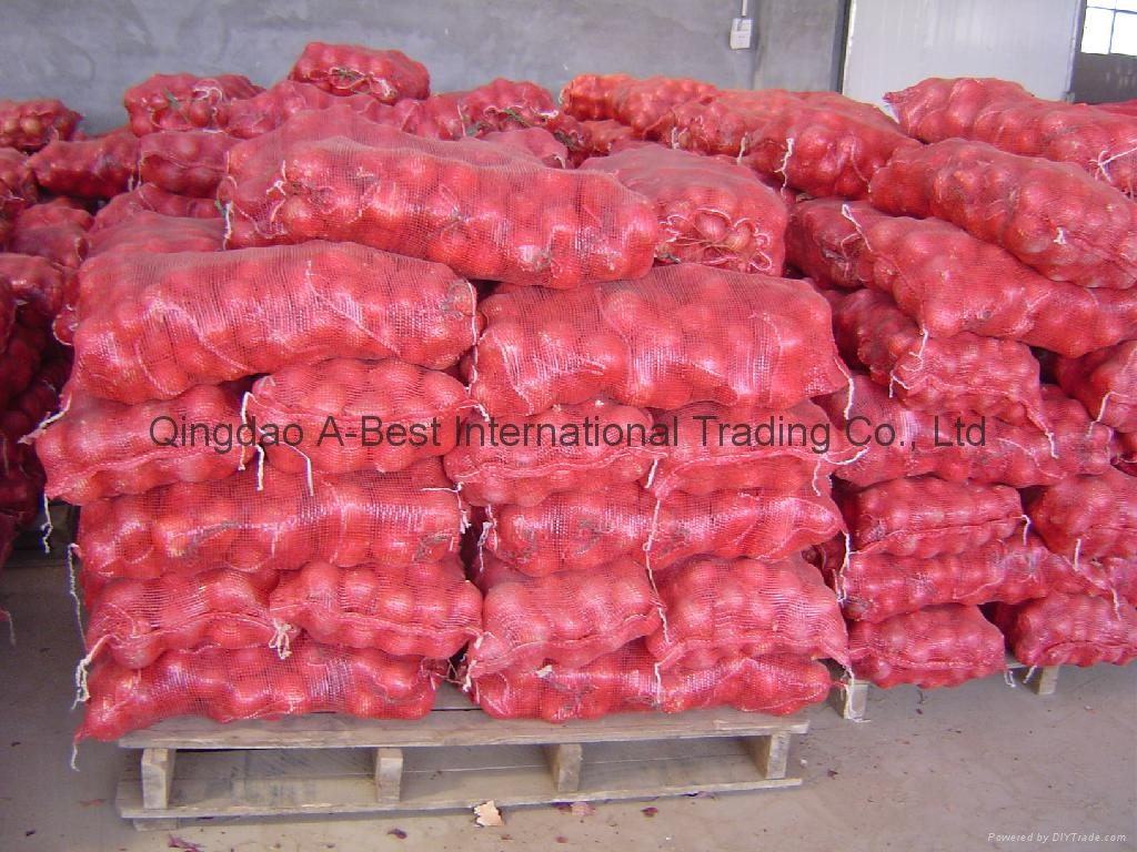 NEW CROPS FRESH RED ONIONS 17