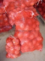 NEW CROPS FRESH RED ONIONS 18