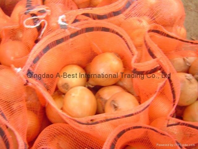 2019 CROPS FRESH YELLOW ONION 12