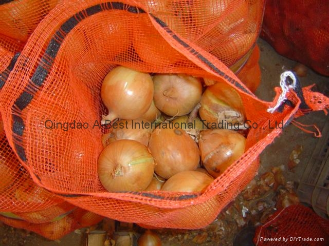 2019 CROPS FRESH YELLOW ONION 13