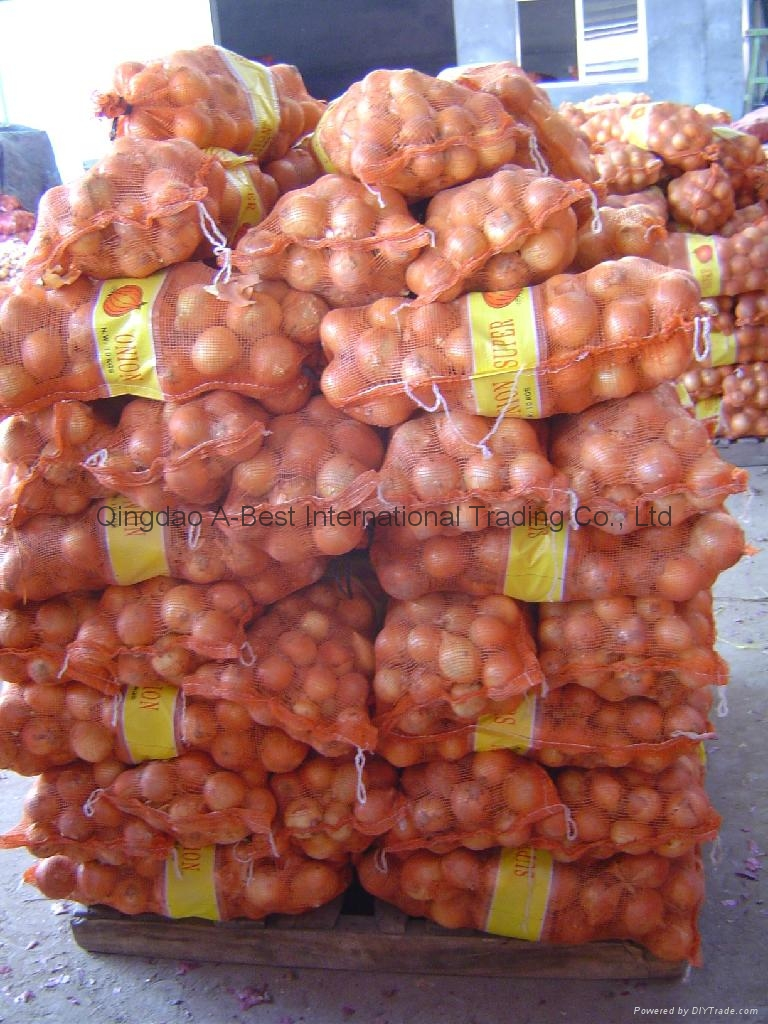 2019 CROPS FRESH YELLOW ONION 14