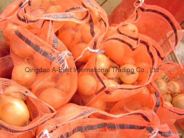 2019 CROPS FRESH YELLOW ONION 15
