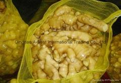 Chinese Fresh Ginger