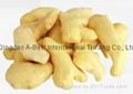 冷凍姜制品